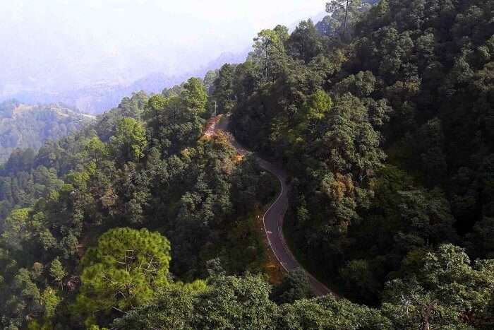 winding roads of hills that we drove on