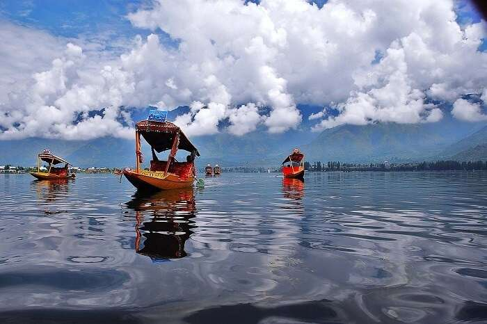 Shikara ride in the Dal Lake of Srinagar