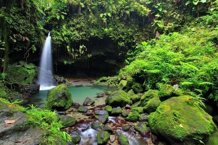 The stunningly beautiful Emerald pool waterfall in Dominica