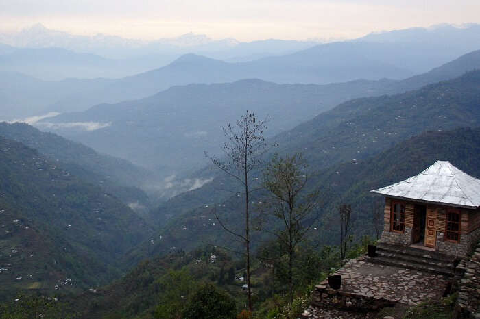 A homestay at the Neora Valley that is one of the most beautiful valleys in India