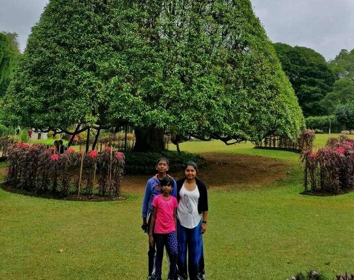 Botanical garden in Sri Lanka
