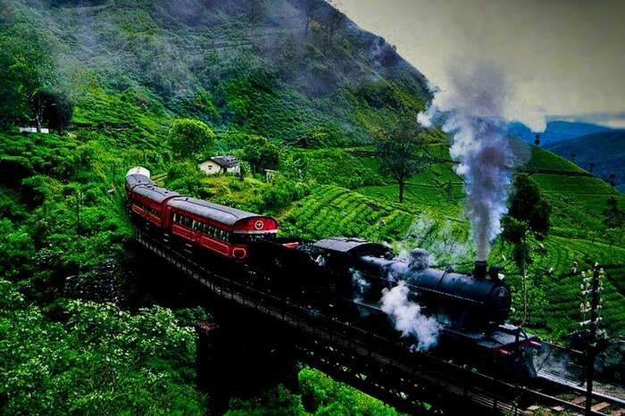 The mesmerizing train ride from Kandy to Ella crossing tea plantation
