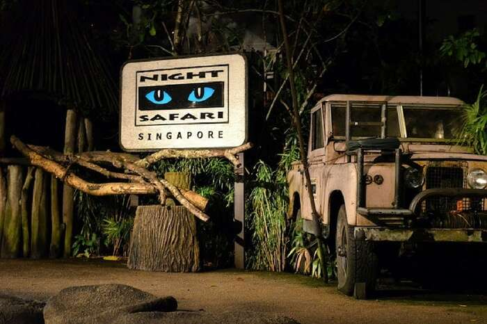 Night safari in Singapore,