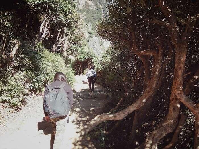 walking on winding paths