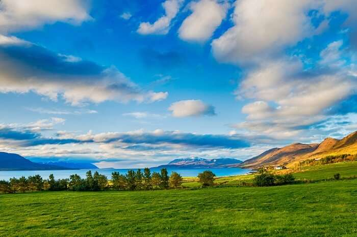 A panoramic view of the grasslands by the river in Akureyri