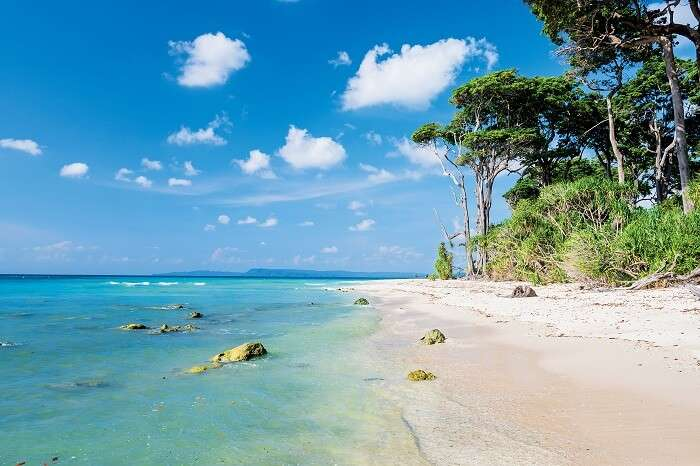 Scene at laxmanpur beach on the Neil Island in Andaman