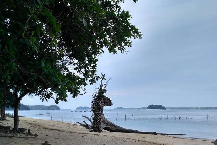A shot of the Wandoor Beach that is a gateway to the Mahatma Gandhi National Marine Park