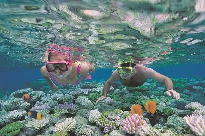 Romantic couple snorkeling on honeymoon in Australia