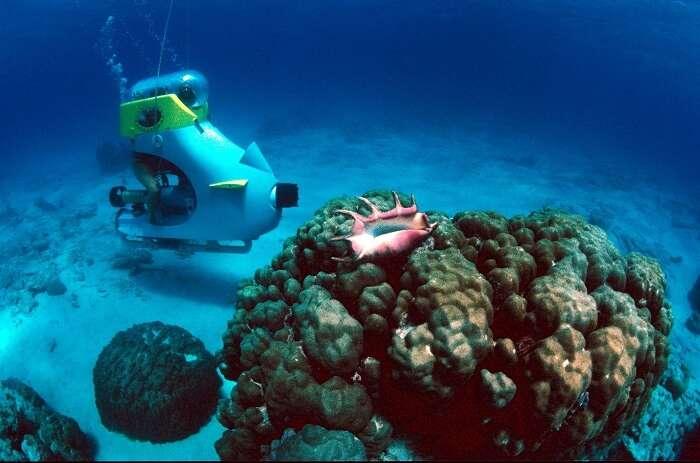 Romantic underwater sea walking in Andaman & Nicobar Islands