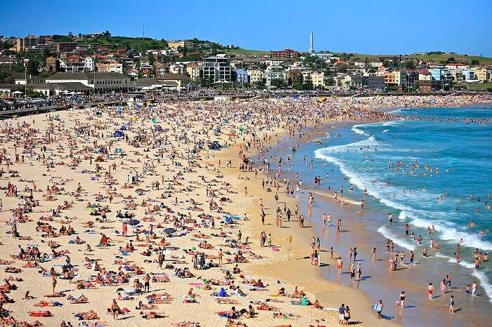 Bondi Beach crowd