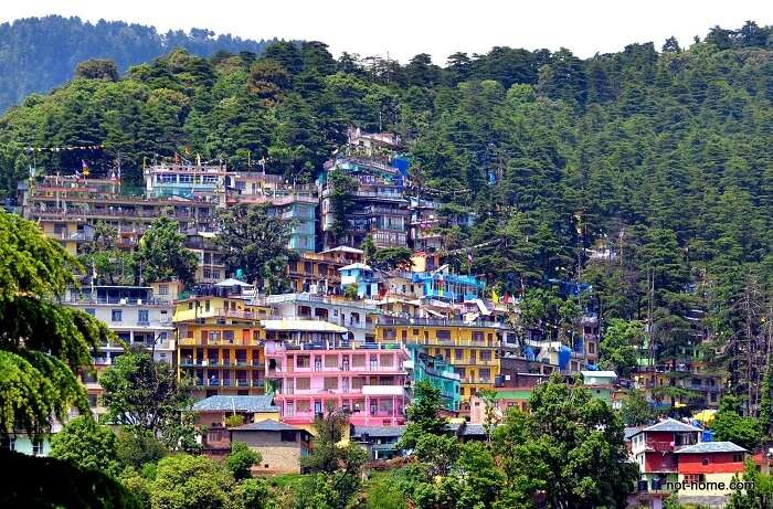 colorful accommodation in Dharamshala