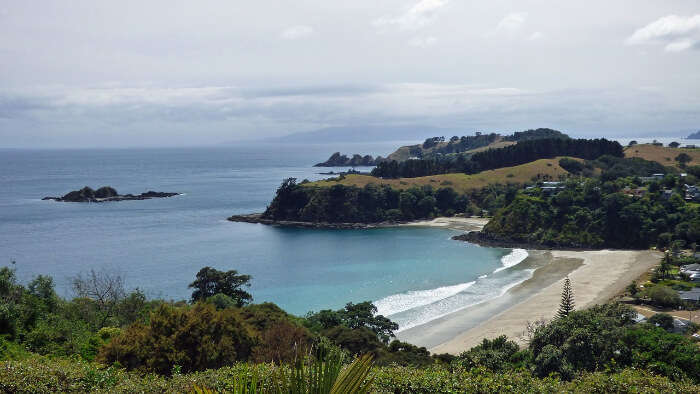 Beautiful Beach in Auckland