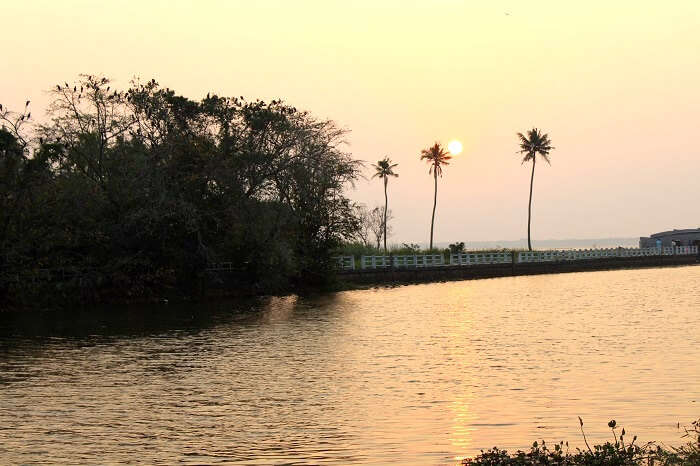 beautiful sunset in alleppey