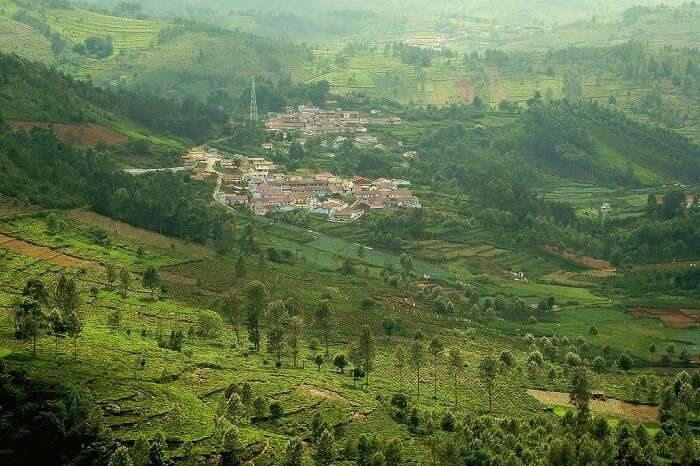 Kotagiri Hill Station in Nilgiris