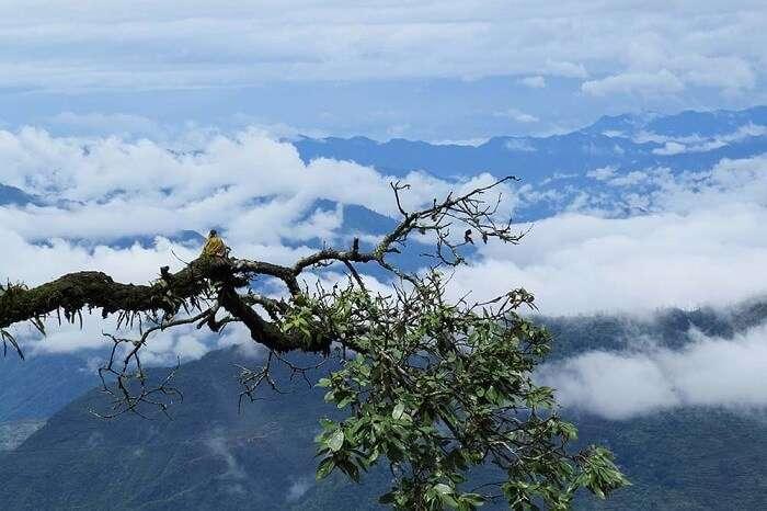 Trip to Lansdowne, Uttarakhand
