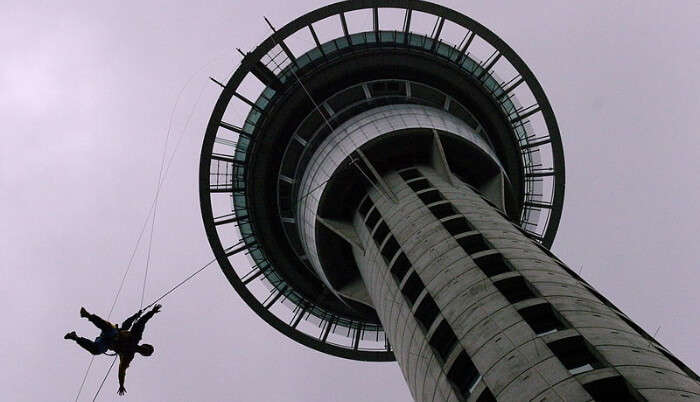 Sky Walking at Sky Tower