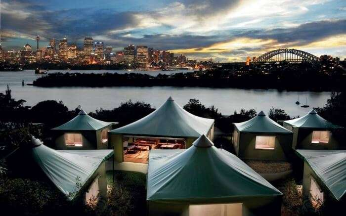 View of Roar and Snore in Sydney