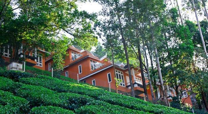Tea Valley Resort Munnar
