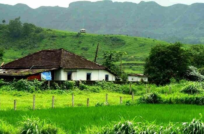 The green valley of Karjat near Mumbai