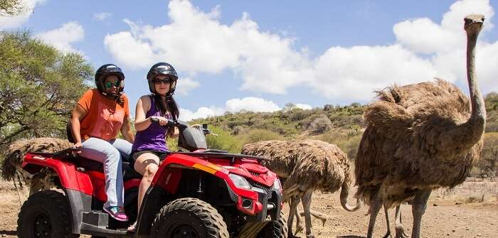 Quad biking safari in Casela Nature Park