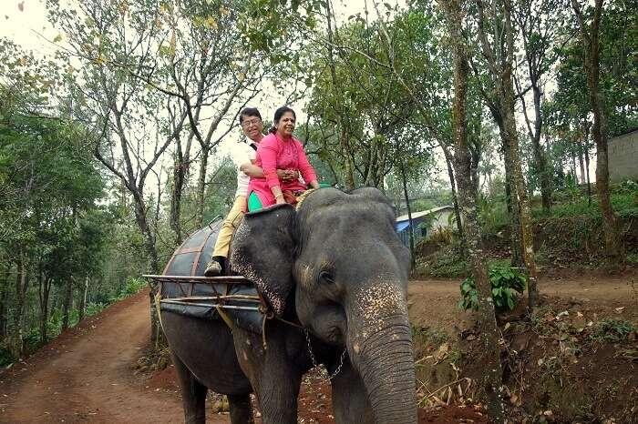 couple on elephant thekkady