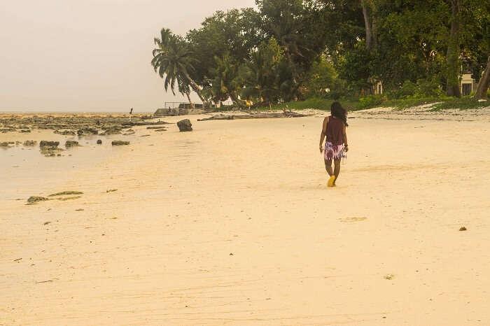 beaches of andaman