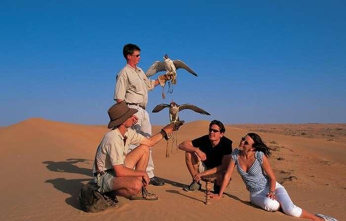 honeymoon couple enjoying Falconry Experience Dubai