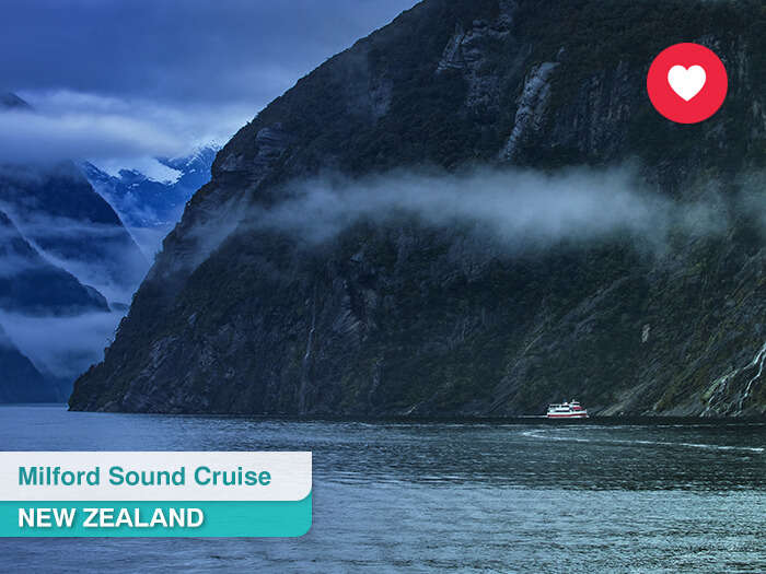 Milford sound cruise in New Zealand