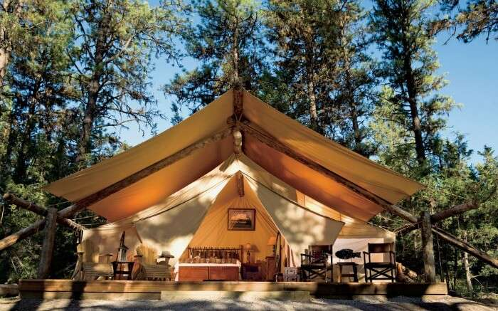Paws Up Resort in Montana