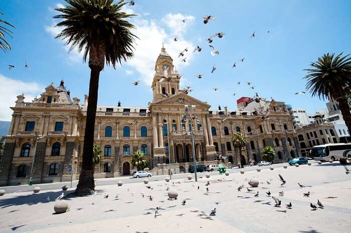 Pigeons flying over city hall of Cape Town in South Africa