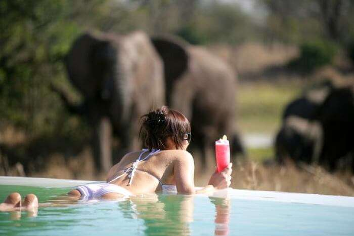 A honeymooner relaxing in a pool during safari honeymoon in South Africa