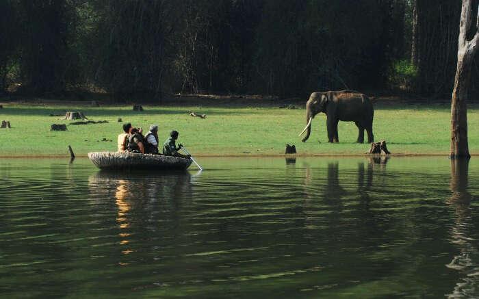 Travelers enjoying an ecotour in a lake in Kerala