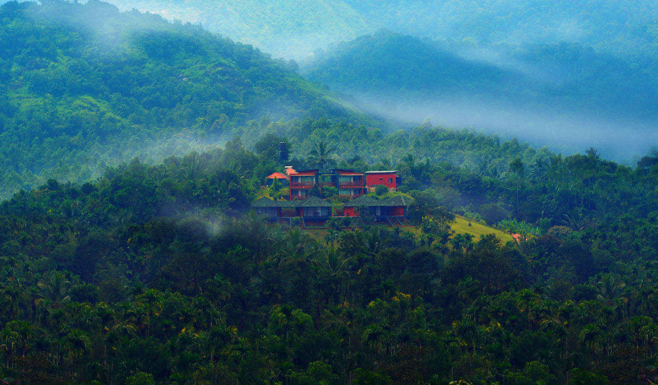 Luxury suites of Petals Resorts nestled in lush greenery in Wayanad
