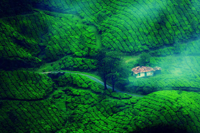 hill station in Kerala