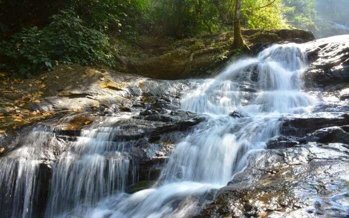 Iruppu falls in a jungle