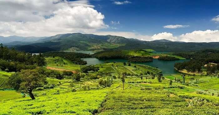 15 Places To Visit In Ooty For An Extremely Fun Vacay In 2019