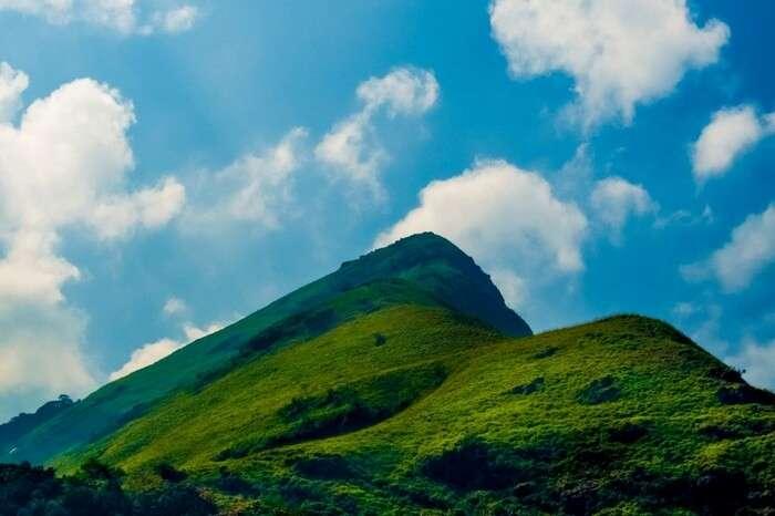 Beautiful nature at the top of Chembra Peak in Wayanad