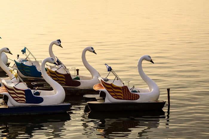 Duck boat on West Lake in Hanoi