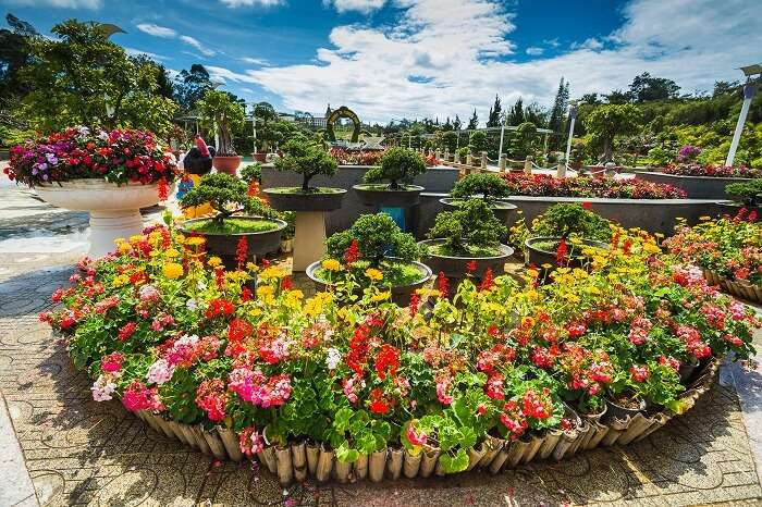 The City flower garden in Dalat in Vietnam