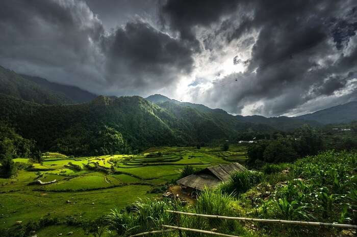 Rice fields on terraced of Sapa city at Northwest Vietnam