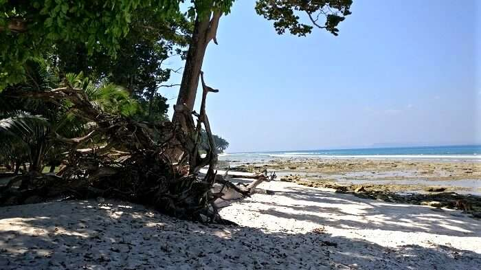 white sand beaches in Andaman