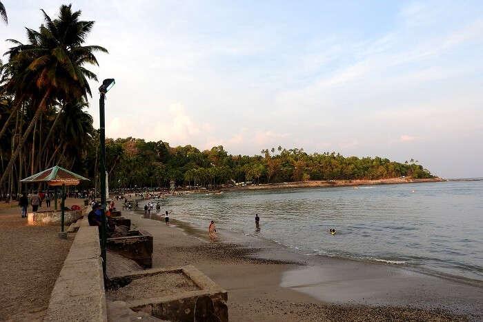 shoreline of a beach in Andaman