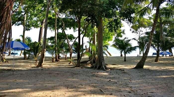 white sand beaches in Port Blair, Andaman