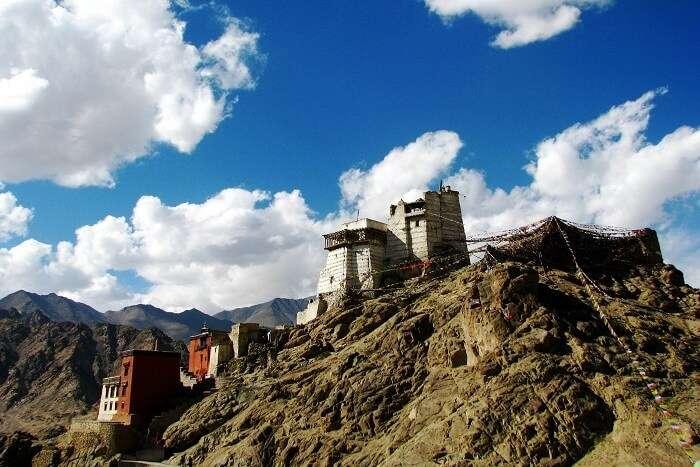 Namgyal Tsemo Gompa Leh