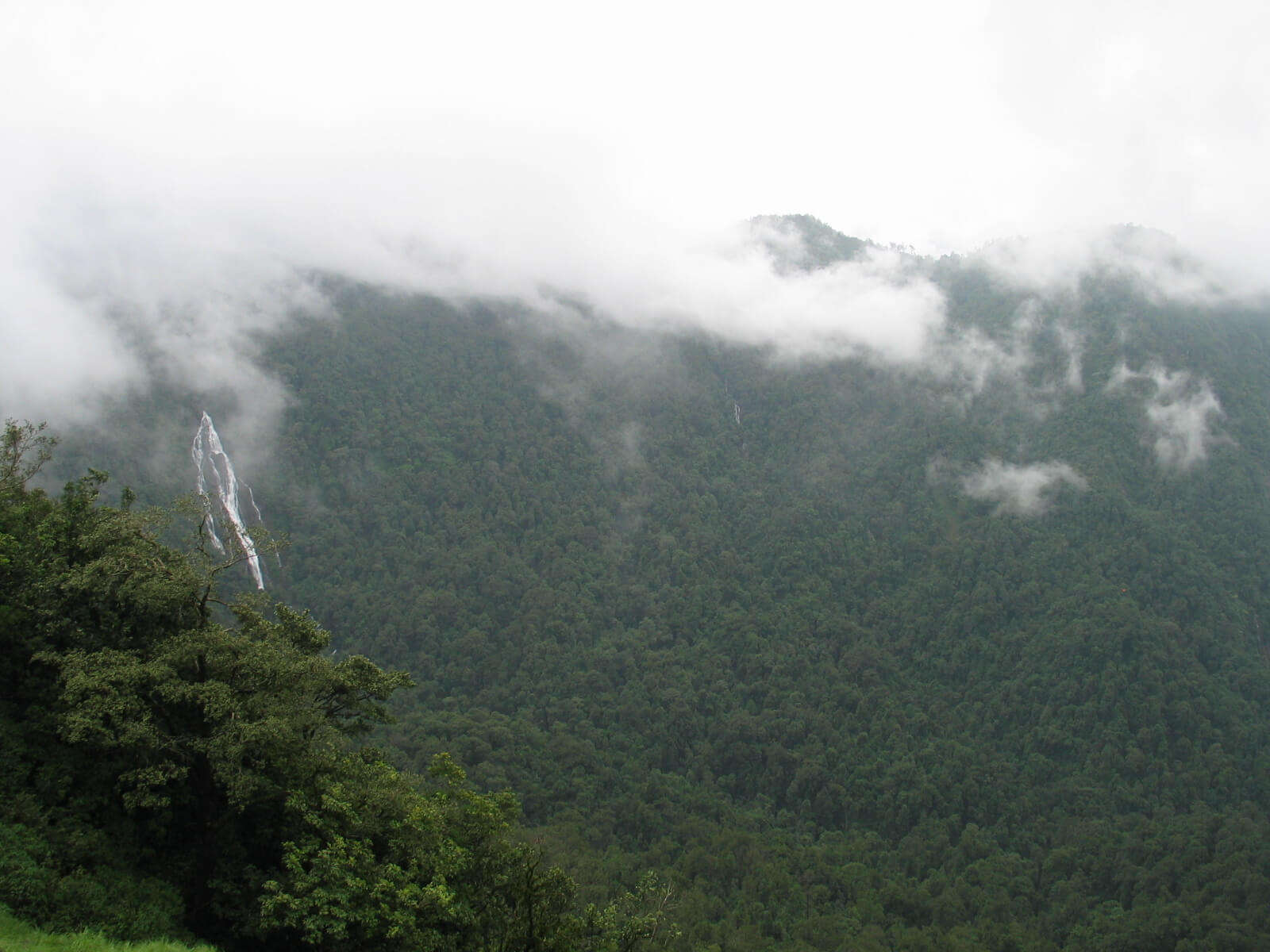 Misty mountains and Barkana Falls in Agumbe