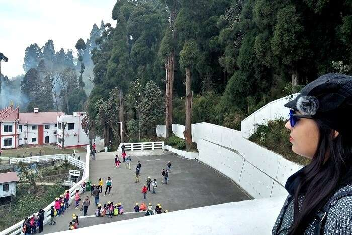 sightseeing in darjeeling