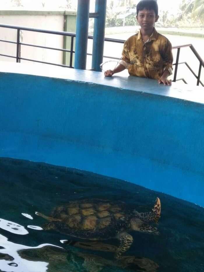 kovalam aquarium
