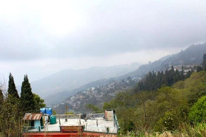 scenic view in darjeeling