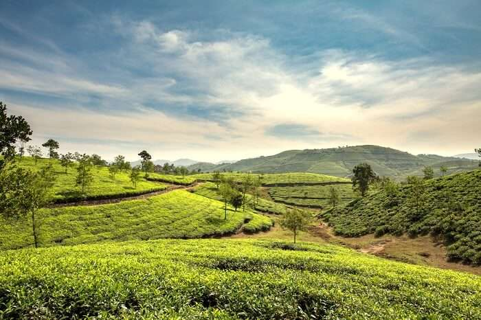 places to visit in kerala in august