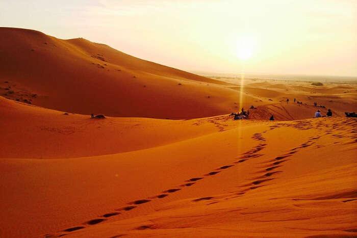 Witnessing sunsets & sunrises, camel trekking, and star gazing in Sahara